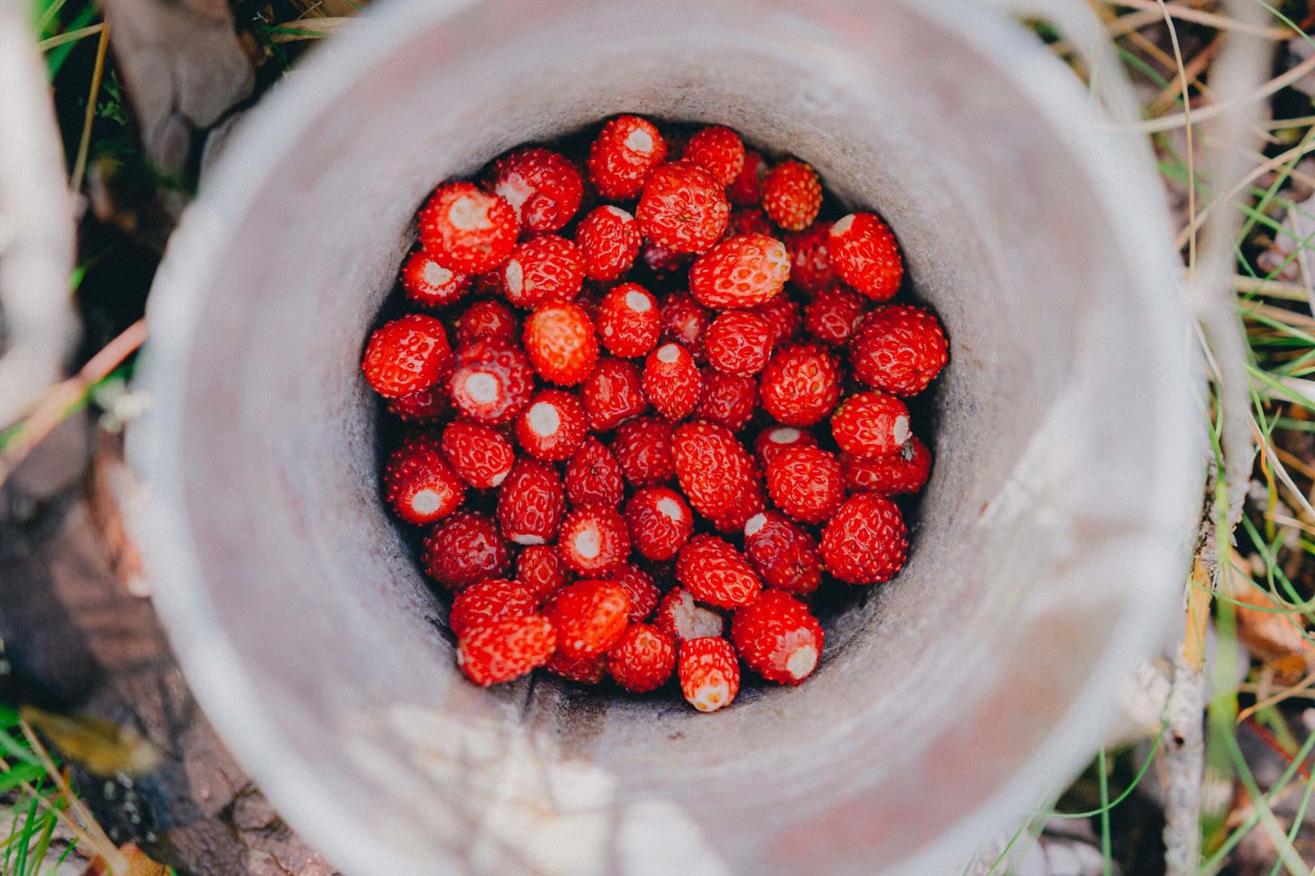 visit corfu corfiot strawberries